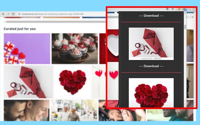 Bulk Image Downloader 5.76 Crack With Registration Key 2020 Free Download