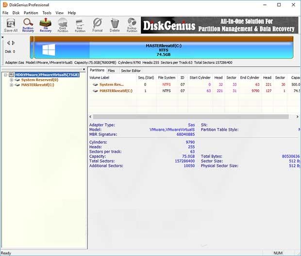DiskGenius Professional 5.3.0.1066 Crack With Serial Key 2020 Free Download